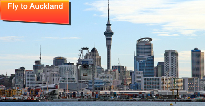 Auckland Flights