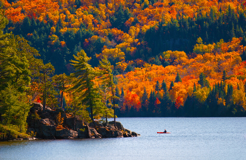 Best places to see the last fall foliage
